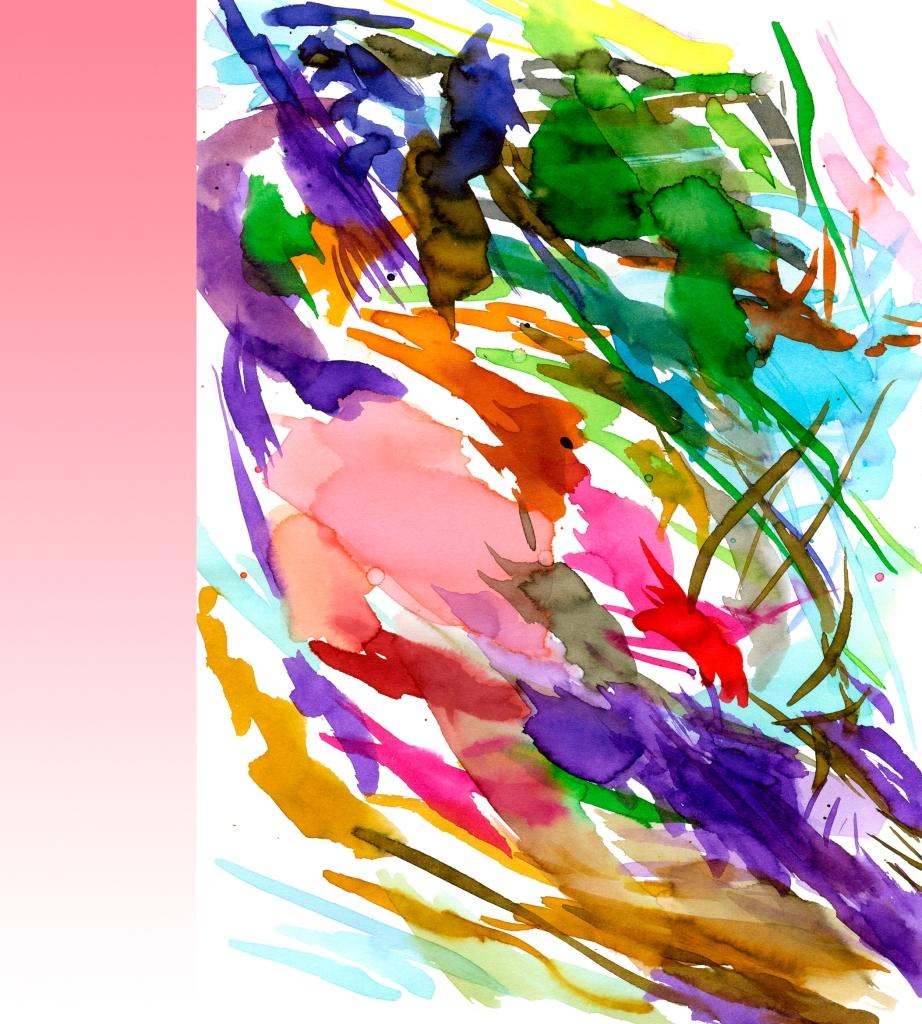 kleur 3 roos newkl