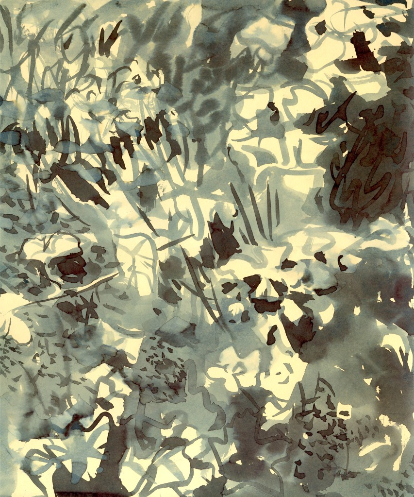 Tm anemonen-ginkgo