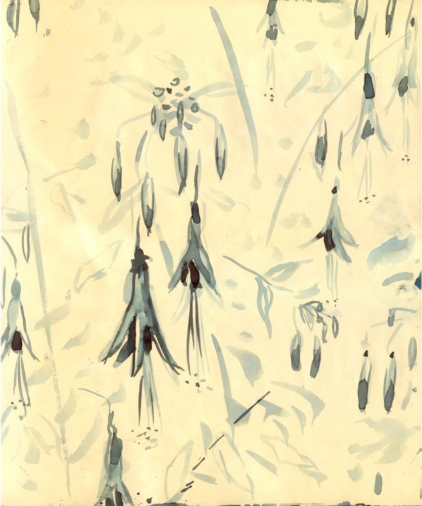 Tm Fuchsia