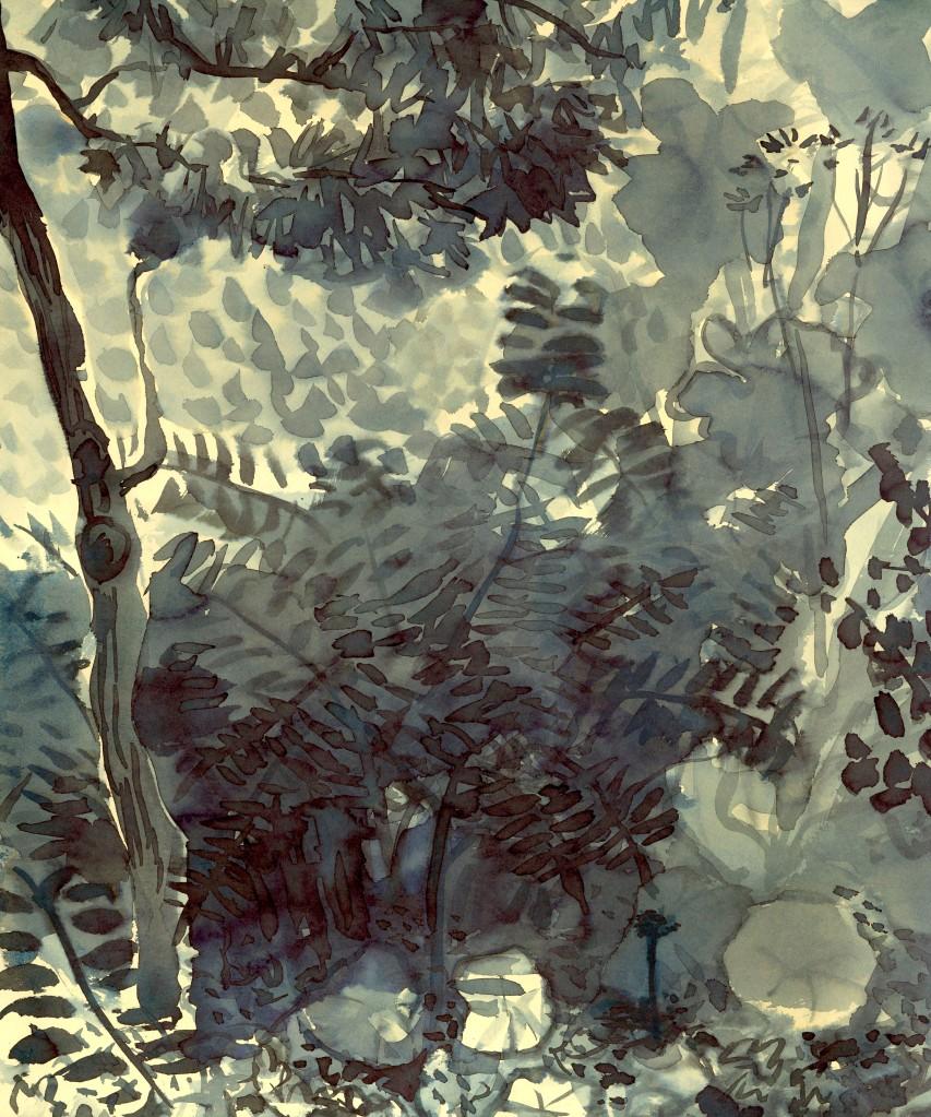 Tm onder de Amberboom