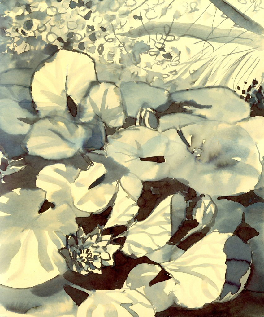 Tm Waterlelies